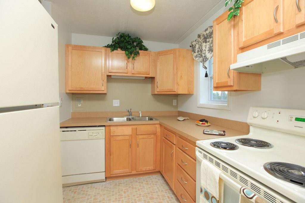 Light, bright kitchen. - Apartment for rent in Ithaca, NY
